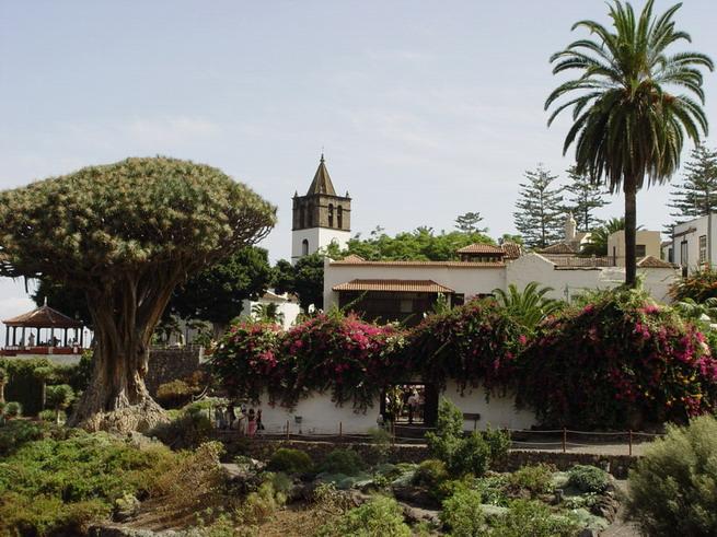 Icod de los Vinos-Tenerife